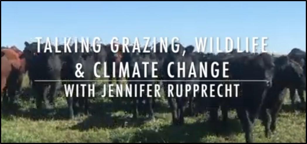Land Stewardship Project video