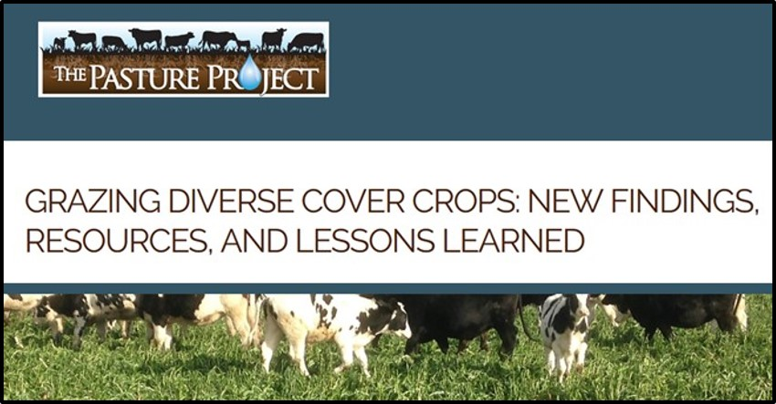 Pasture Project, LSP, PFI, SFA project on cover crop grazing