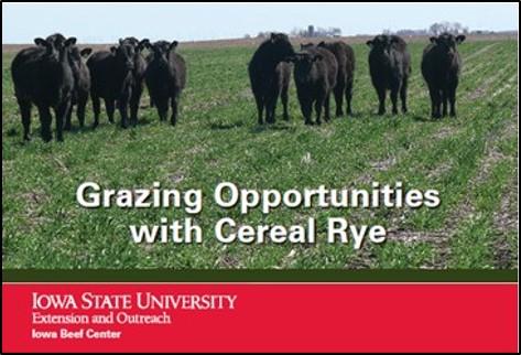 ISU grazing cereal rye fact sheet Iowa State Univ