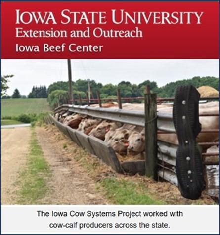 Iowa Cow Calf Systems Report