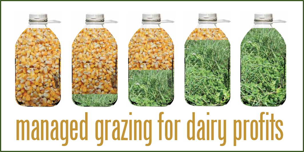 Managed Grazing graphic of milk jugs corn to grass